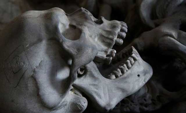 В расселенном доме в центре Петербурга нашли два скелета
