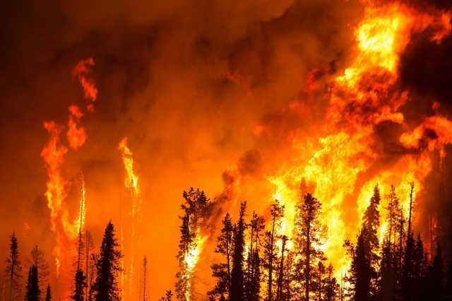 Пожароопасные инвестиции. Почему следующих катастрофических пожаров стоит ждать не в Сибири, а на Дальнем Востоке?